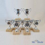 11er_Pack_Champions_Pokal